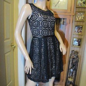 Enfocus Petite Dark Navy Blue Lace Dress 6P